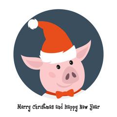 Cute pig in santa hat.