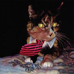 Cat in tie