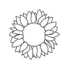 vector sunflower seed head flower