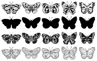 Set of various butterflies forms, silhouettes, ornate icons. Black and white.