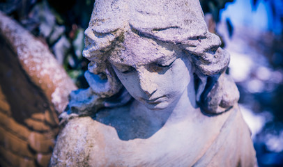 Fototapete - Antique statue of sad angel as a symbol of eternity, life and death. Religion concept.