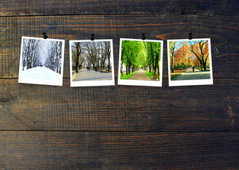 Photos of four seasons attached to dark wooden wall. Seasons on dark background