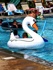 People relaxing with a swan float in a blue swimming pool.