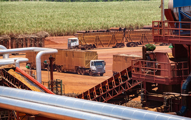 High angle view of trucks at sugar cane factory during sunny day