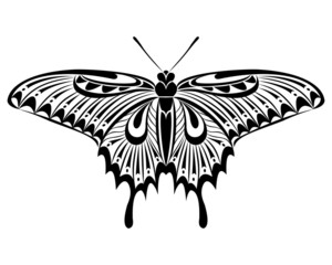 Papilio maackii Butterfly vector art stencil for tattoo or t-shirt print