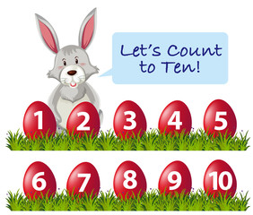 Ester rabbit count number
