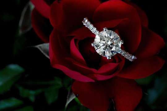 1.5 Carat Diamond Ring On Red Rose And Green Stem Leaves