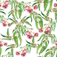 flowers of eucalyptus seamless pattern