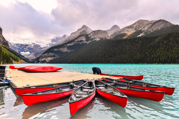 Wall Mural - Canoeing at Lake Louise, one of the most beautiful alpine lakes in the Canadian Rockies, Banff National Park, Alberta, Canada