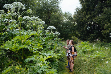 Side view of female friends standing amidst plants on field in forest