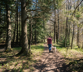 Rear view of man with dog walking in forest