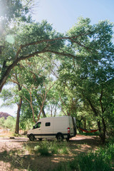 Motor home parked by trees in forest