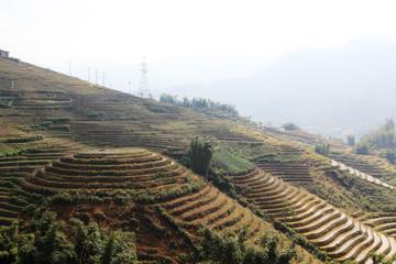 Sapa valley landscape, Vietnam