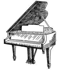 Musical instrument grand piano. The illustration on a white background. Vector freehand drawing of an open grand piano.