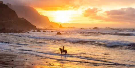 Man horse riding on sunset beach