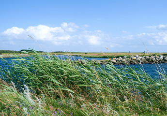 Laesoe / Denmark: On the banks of the Fannemand canal at the southwestern tip of the island