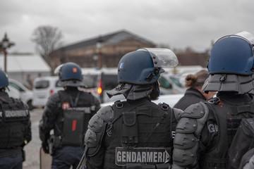 Fototapeta Police while demonstration
