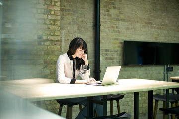 Young professional woman using laptop