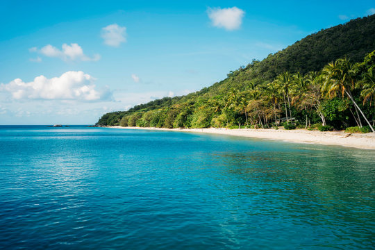 Australia, Fitzroy Island National Park, Tropical island, part of the Great Barrier Reef Marine Park with beach with palm trees