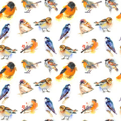 seamless watercolor pattern with birds. Robin, swallow, sparrow, bullfinch.