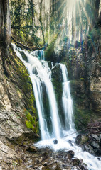 Wall Mural - vertical panorama of a gorgeous waterfall in lush green woods with warm sunlight shining through the trees