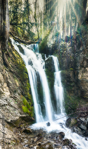 Wall mural vertical panorama of a gorgeous waterfall in lush green woods with warm sunlight shining through the trees