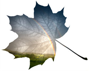 double exposure - leaf and rainbow after storm