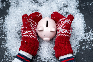 Picture of man's hands in red mittens holding piggy bank