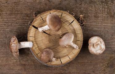 Shiitake mushrooms on a background of wood texture. Useful edible mushrooms.