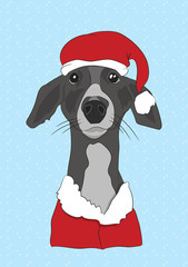 n Christmas clothes, can be used as a greeting card, vector