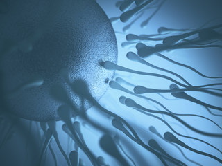 Conceptual image of human reproduction. Sperm trying to get into the egg.