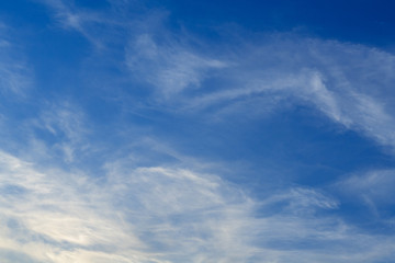 White cirrus clouds in blue sky (background)