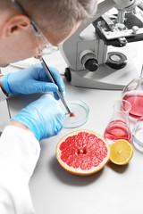 Biotechnologia żywności. Laborant bada próbkę owocu pod mikroskopem.