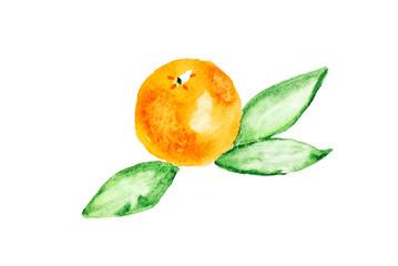 Watercolors hand drawn orange