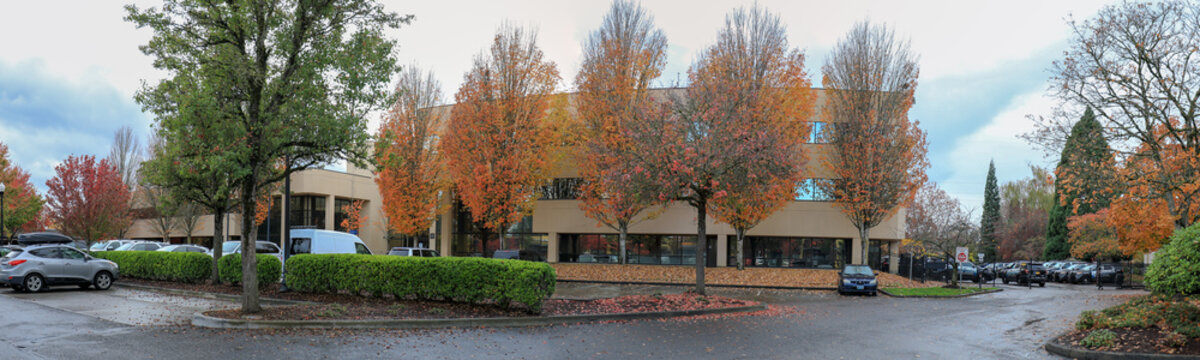 Autumn park in Portland Beaverton