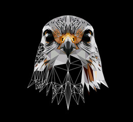 Falcon on black background, low poly triangular and wireframe vector illustration EPS 10 isolated. Polygonal style trendy modern logo design. Suitable for printing on a t-shirt.
