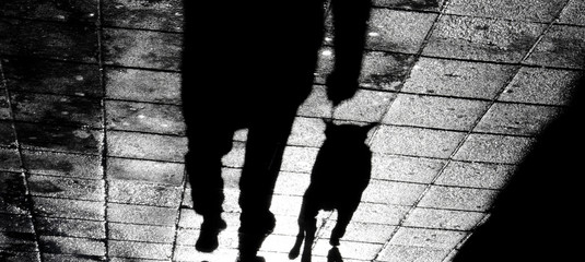 Fotomurales - Blurry shadow of a man with a dog on a leash in the night