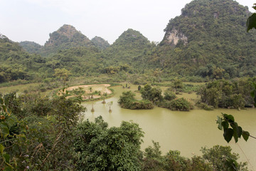 Natural park with birds in Vietnam