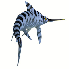 Eurhinosaurus Reptile Stripped Pattern -Eurhinosaurus was a carnivorous Ichthyosaur reptile that lived in Europe during the Jurassic Period.