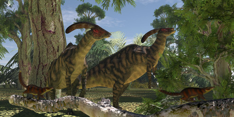 Parasaurolophus in the Forest - Two Parasaurolophus dinosaurs browse on foliage of the Montezuma Cypress tree as Cronopia mammals scrurry to safety.