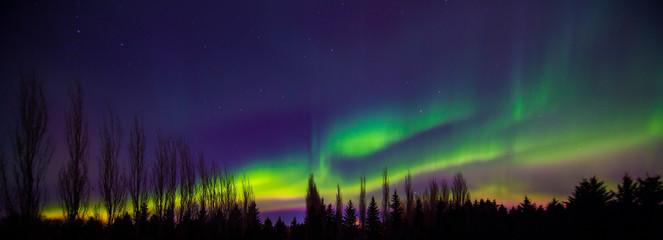 Fotobehang Noorderlicht Northern Light Storm in Canada