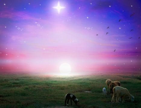 Christmas Eve concept:  A Bethlehem illuminated by the Christmas star of Christ