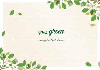Fototapeta 新緑のシンプルフレーム obraz
