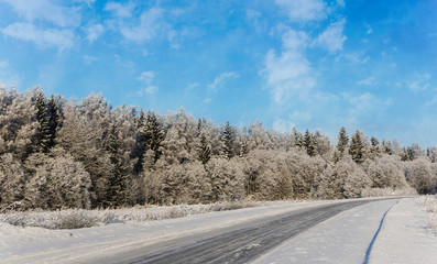Winter landscape - the road along the wood