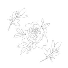 flowers, vegetation, flora, pattern, minimalism