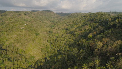 tropical forest on mountain slopes. aerial view rainforest in Indonesia. tropical forest with green, lush vegetation.