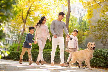 Happy young family walking their dog