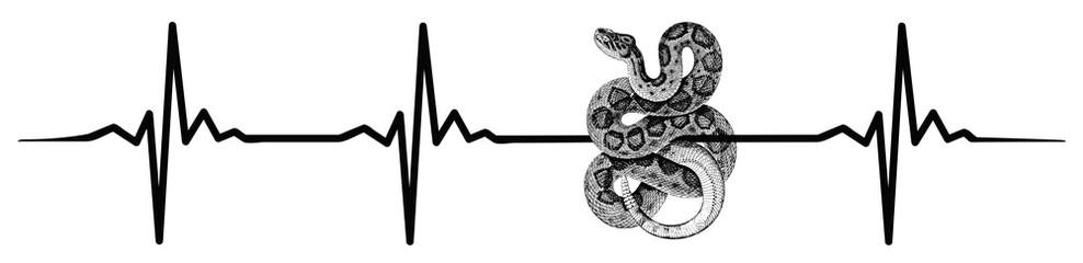 Snake heartbeat #isoliert #vektor - Schlange Herzschlag