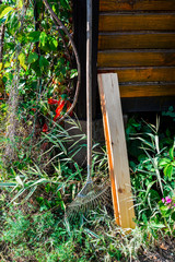Rake, grass, autumn plants, piece of wood. Garden work, instruments. Seasonal flora, blooming. Village life, farm, cozy outdoor view for posters, prints, web, calendars. Suburb summer, early autumn.