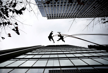 Window cleaners, dressed as a dog (R) and wild boar, this year's and next year's Chinese zodiac animals, pose while cleaning the windows of Ryumeikan hotel in Tokyo